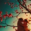 【梓夏心情】成熟的爱情