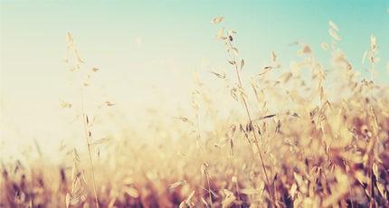【旧日时光】感谢你陪我走过青春最美的一程