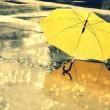 要记得带伞,记得一个人好好生活
