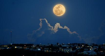 她是盏温夜的月