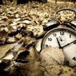 时光流逝,物是人非