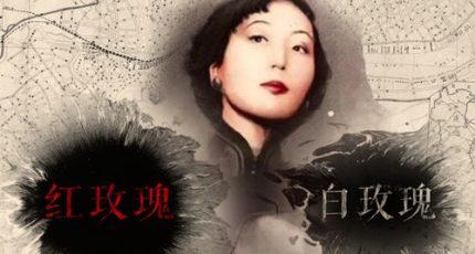 (张爱玲)小说《红玫瑰与白玫瑰》全文电子版下载阅读