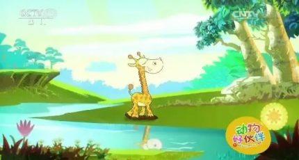 儿童睡前有声故事《骄傲的长颈鹿》在线收听