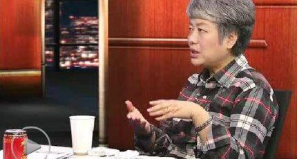 陈丹青、李玫瑾《锵锵三人行》:儿童从小喜欢打架 成年后不会特别暴力