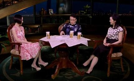 陈鲁豫《锵锵三人行》:我不够自信 跟观众有一点点距离